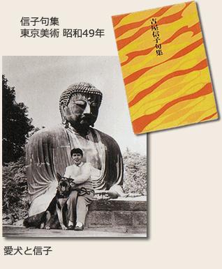 鎌倉大仏と歴史資料:現代文学 | 鎌倉大仏殿高徳院